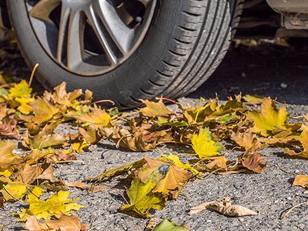 Aktuelles-Herbst-Autoreifen-auf-Laub